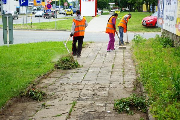 Vépépéčka pomáhají při úklidu Kolína | FOTO: Martin Prokop